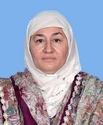 Nafeesa Inayatullah Khan Khattak Women in Elections Women in Politics PakVoter Elections Portal Pakistan