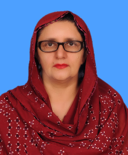 Zubaida Jalal Women in Elections Women in Politics PakVoter Elections Portal Pakistan